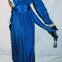 Side View of Royal Blue Silk Dress with Tails