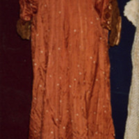 Front View of Brown Tea Gown