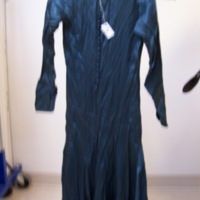 Back View of Teal Silk Dress with Sleeves