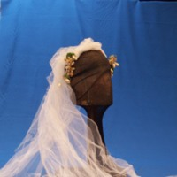 Side View of Wedding Dress and Veil