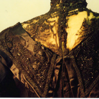 Detail View of Black Lace Bodice with Full Sleeves