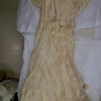 Back View of Wedding Dress and Veil