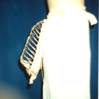 Side View of Wire Bustle Cage