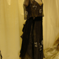 Side View of Black and Gold Beaded Dress