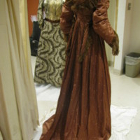 Back View of Brown Tea Gown