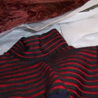 Detail View of Navy Bodice with Red  Yoke