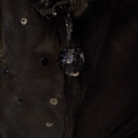 Detail View of 1920's Black Dress with Sequins