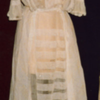 Back View of Net Dress with Ruched Trim