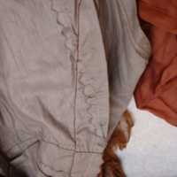 Interior Construction View of Brown Tea Gown