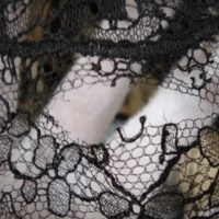 View of Condition of Cream and Black Printed Silk Dress with Black Lace